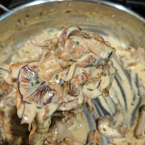 Chanterelle Mushroom Cream Sauce Recipe