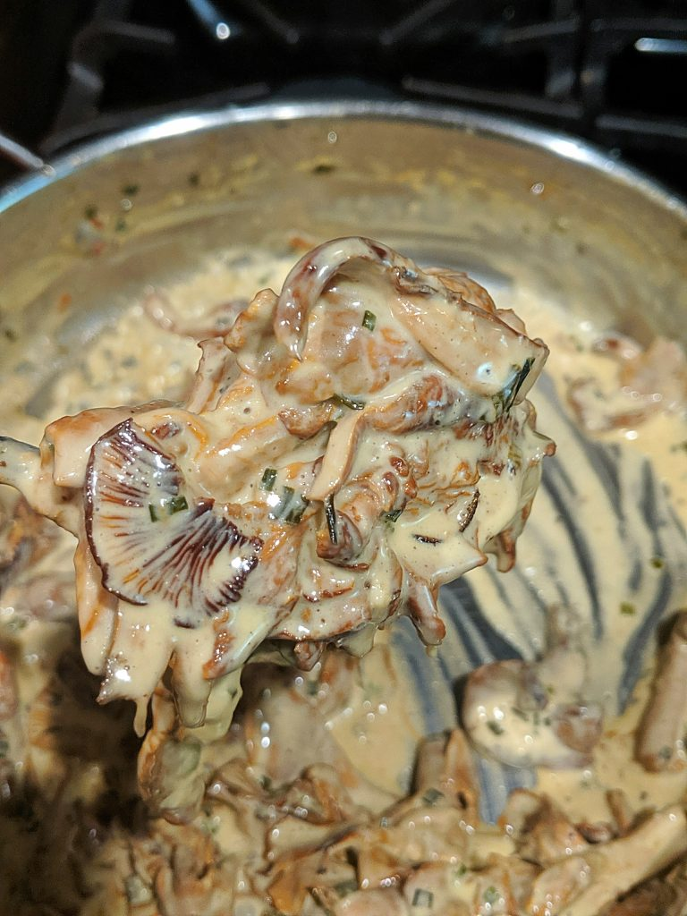 Chanterelle Mushroom Cream Sauce Recipe
