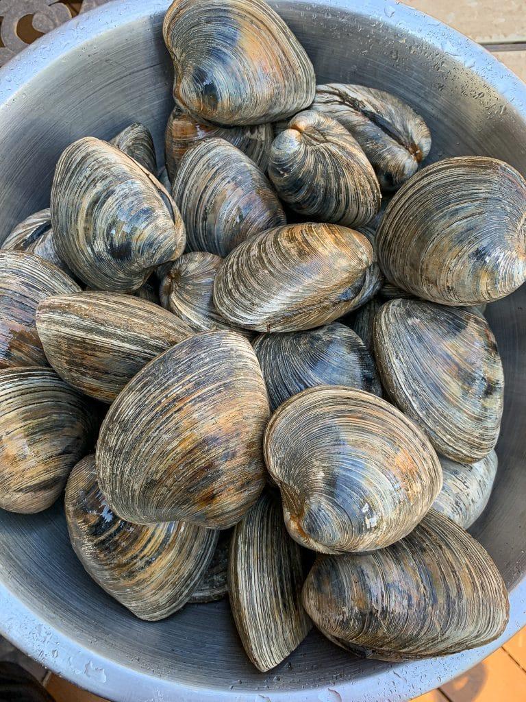 fresh cherrystone clams for clams casino